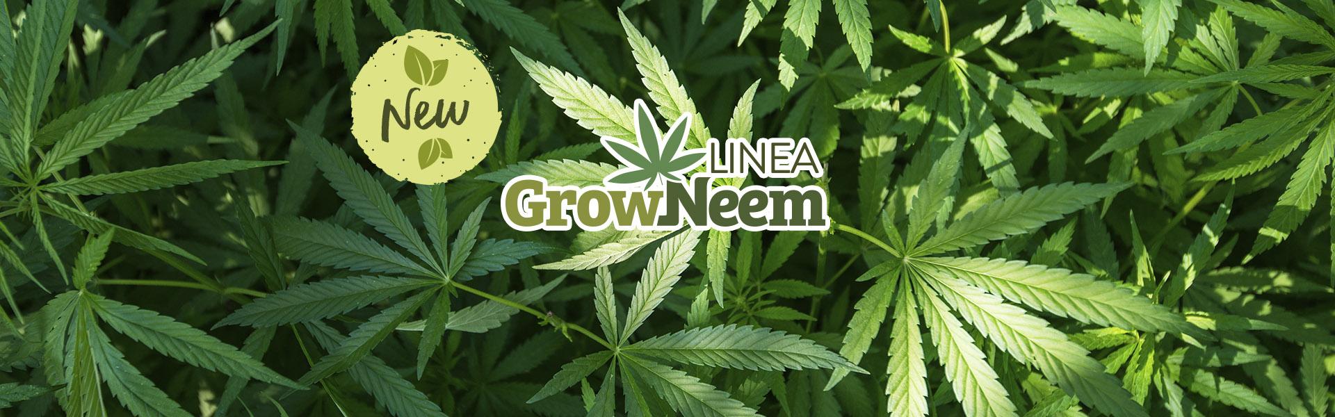 Slide_linea_GROWNEEM_home_EN